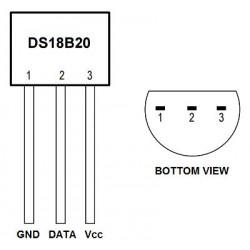 DS18B20 digital temperature sensor